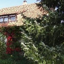 einfamilienhaus-dieterskirch